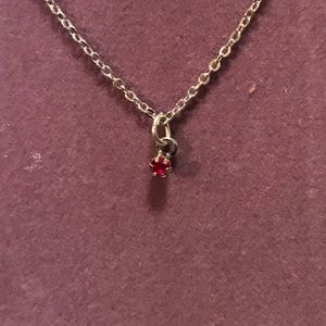 0be03b6dc5bba5 Jewelry | Little Ruby Necklace 210 Sale | Poshmark